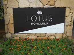 lotushonolulu