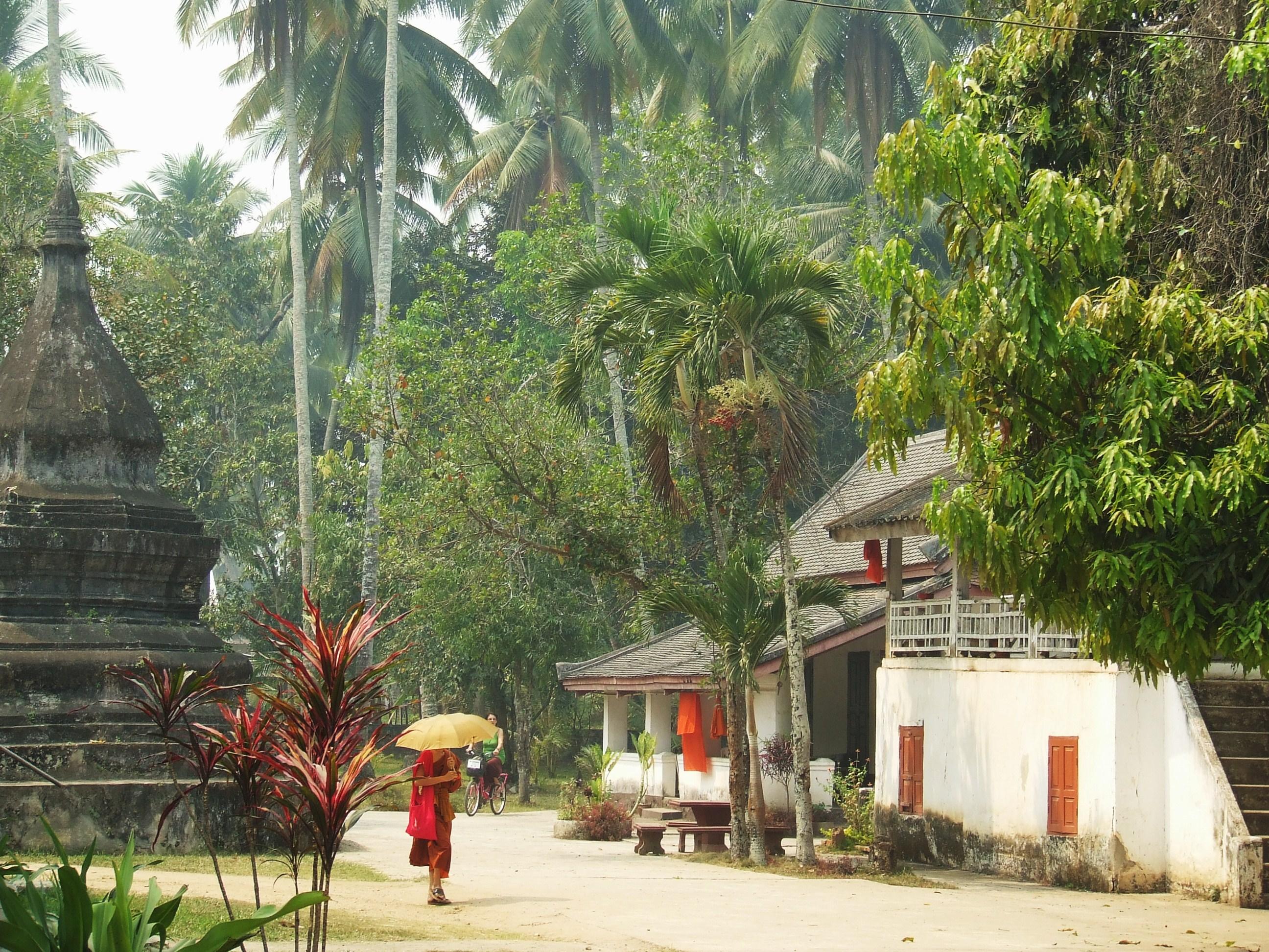 monk mekong