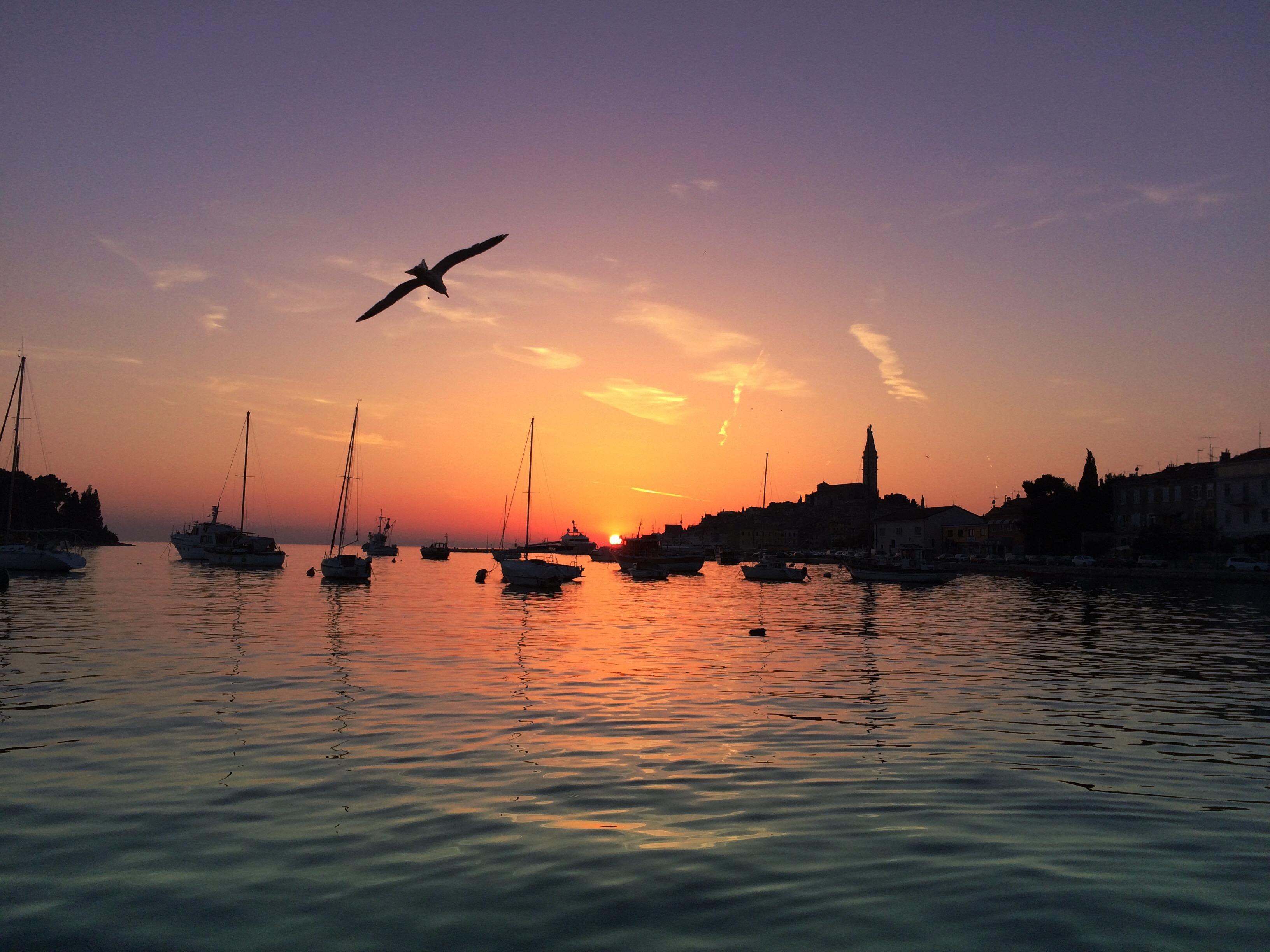 5-rovinj-croatia-sunset-silhouettes-birds-girltripping